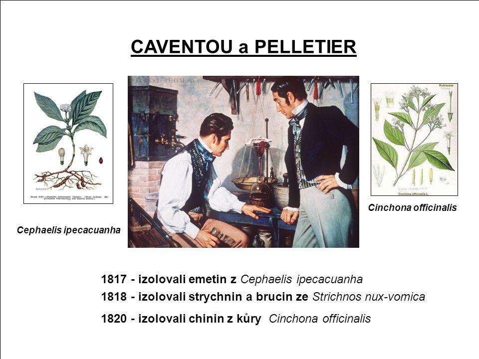 Kulčibové alkaloidy CAVENTOU a PELLETIER
