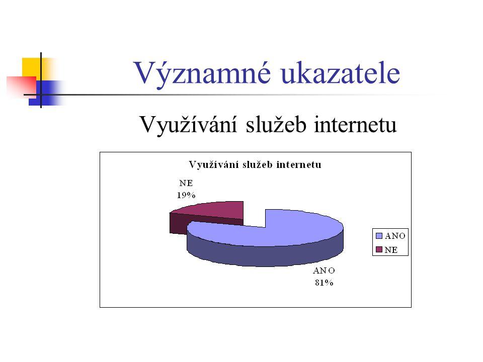 Využívání služeb internetu