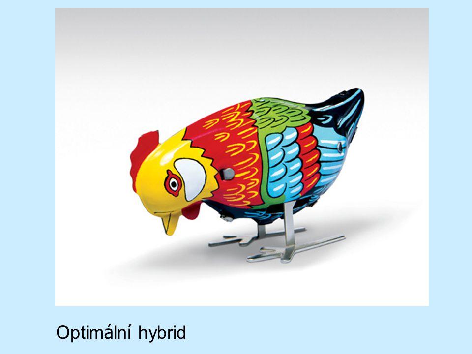 Optimální hybrid
