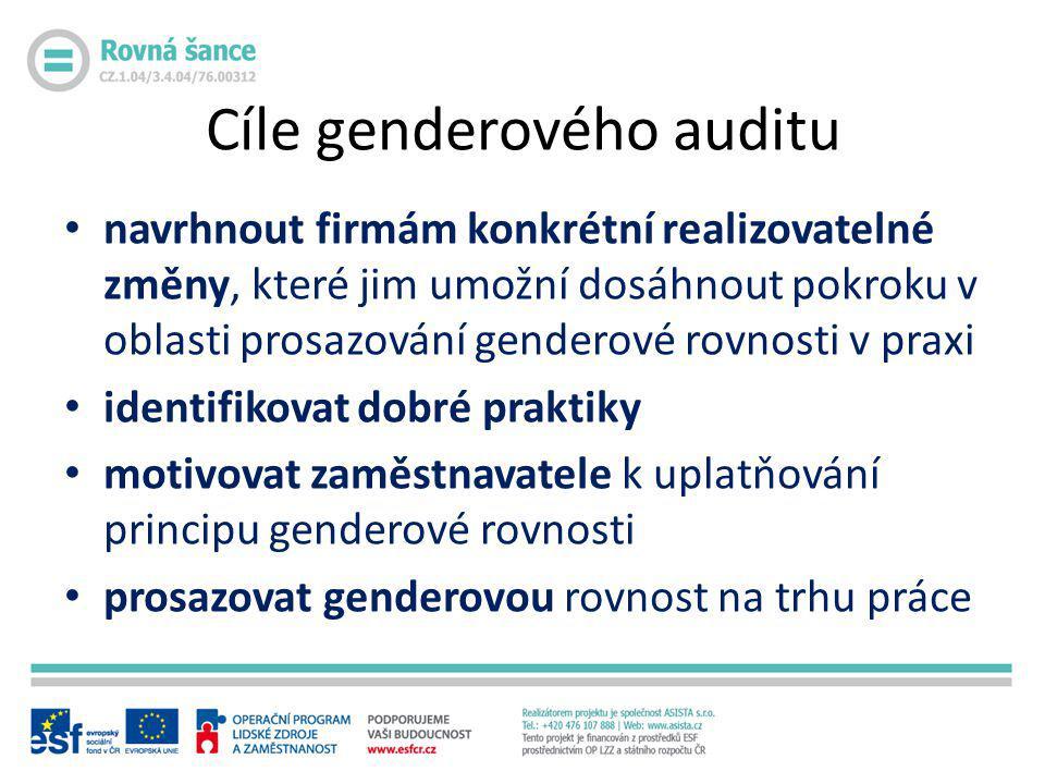 Cíle genderového auditu