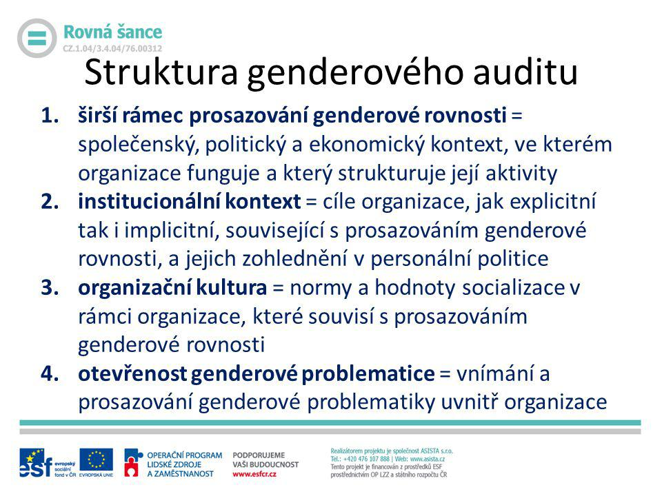 Struktura genderového auditu