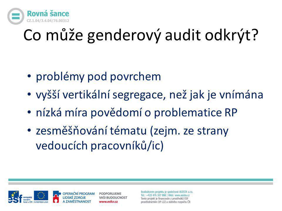 Co může genderový audit odkrýt