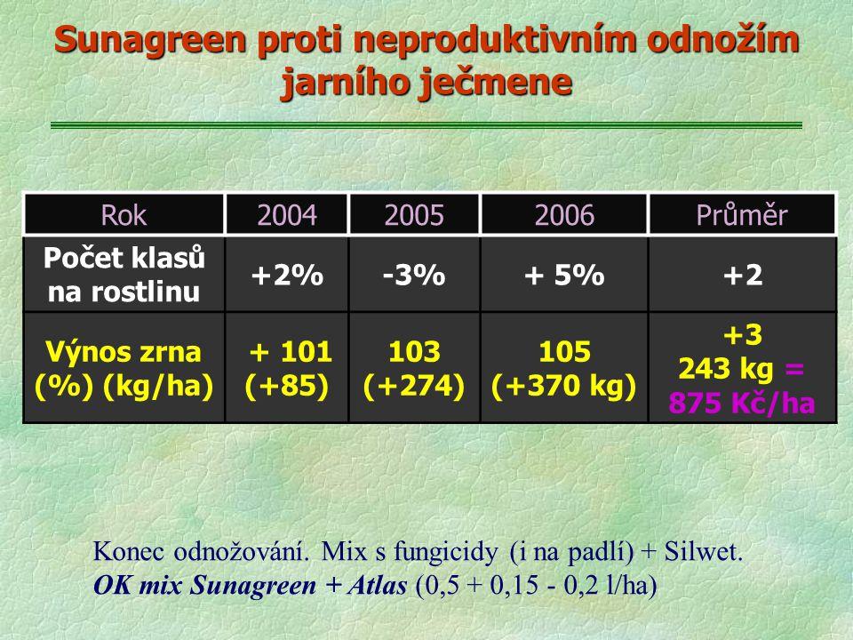 Sunagreen proti neproduktivním odnožím jarního ječmene