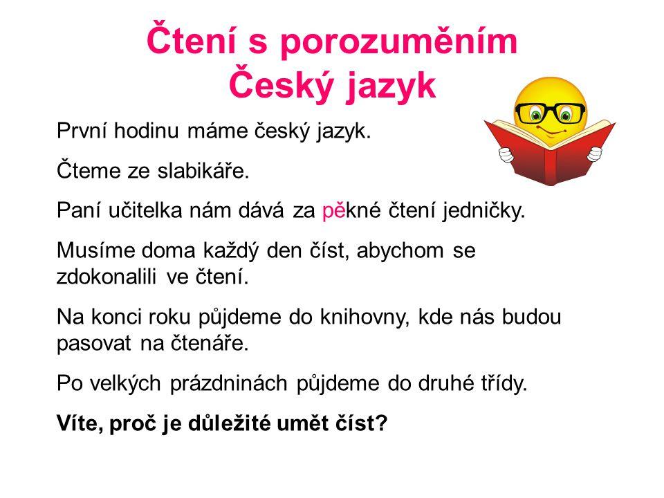 Čtení s porozuměním Český jazyk
