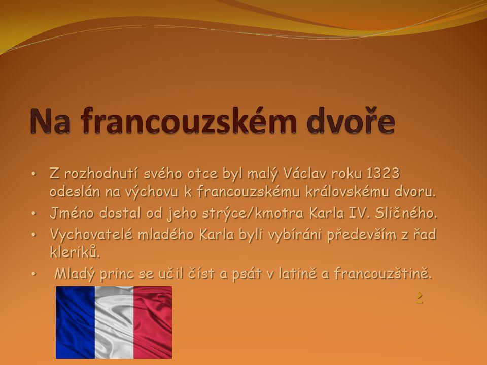 Na francouzském dvoře Z rozhodnutí svého otce byl malý Václav roku 1323 odeslán na výchovu k francouzskému královskému dvoru.