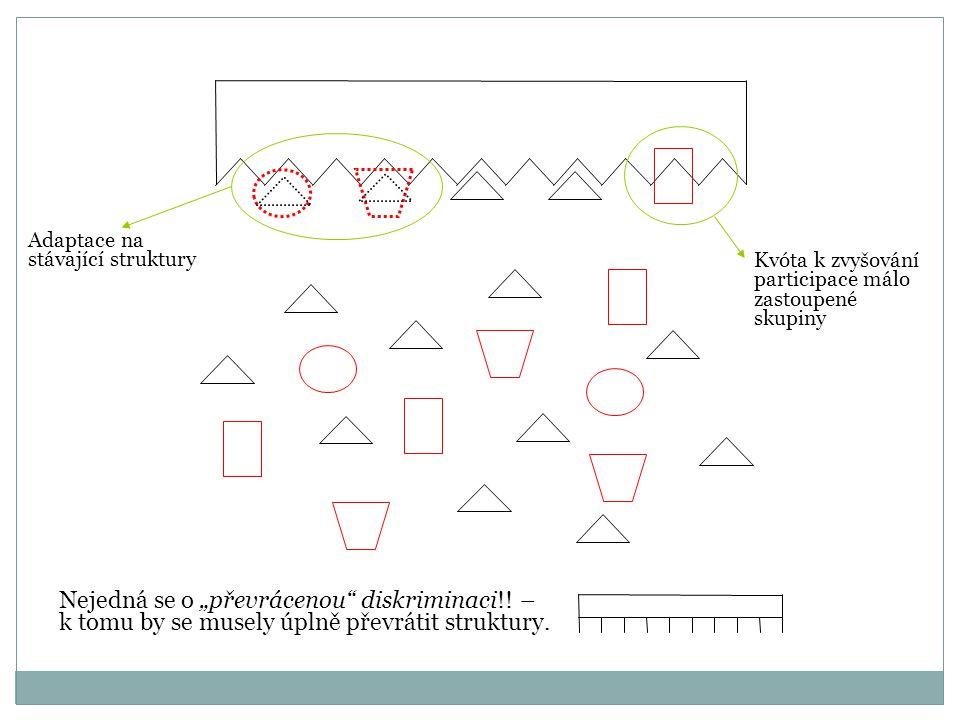 Adaptace na stávající struktury