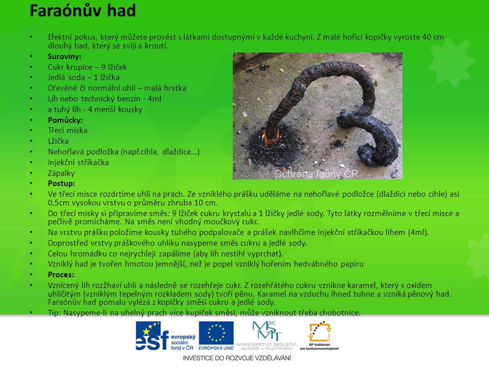 Faraónův had