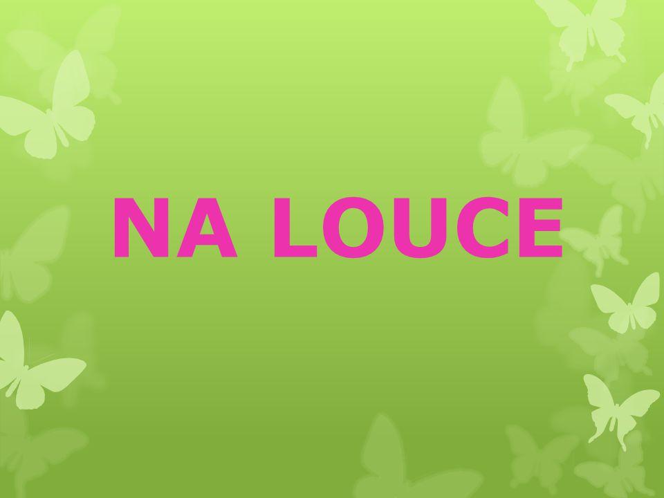 NA LOUCE