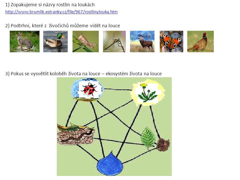 1) Zopakujeme si názvy rostlin na loukách