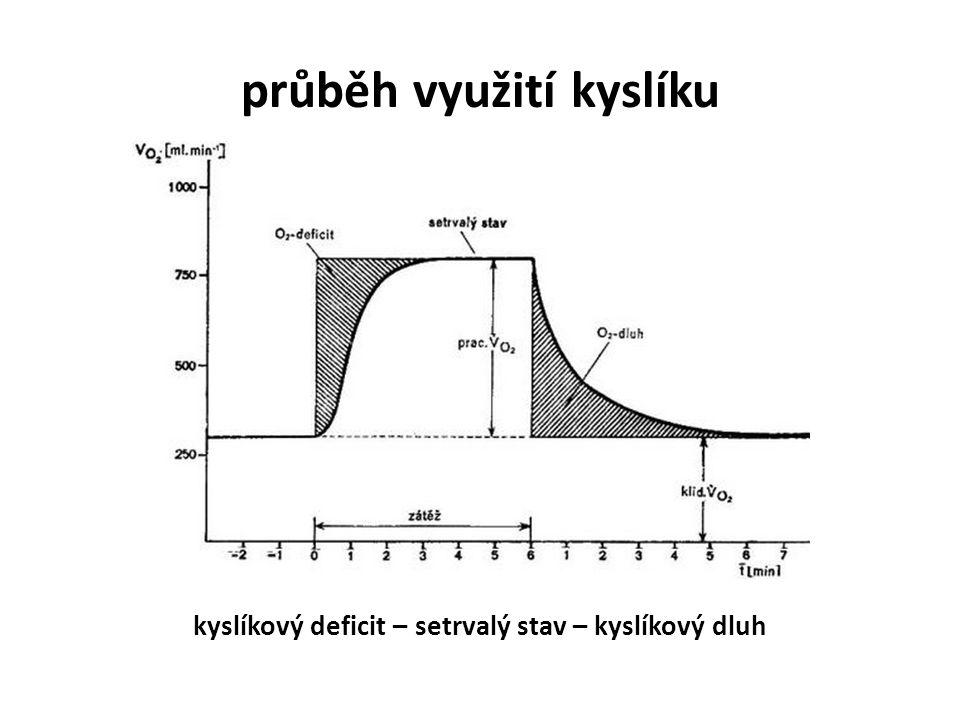 průběh využití kyslíku