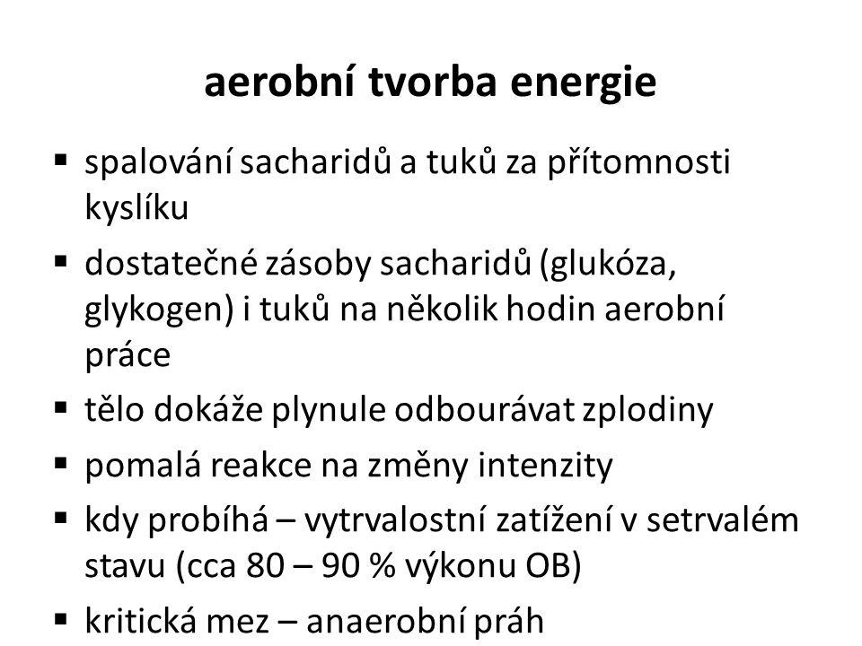 aerobní tvorba energie