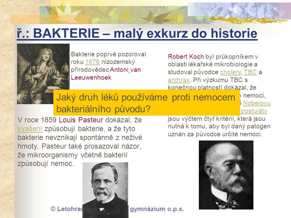 ř.: BAKTERIE – malý exkurz do historie