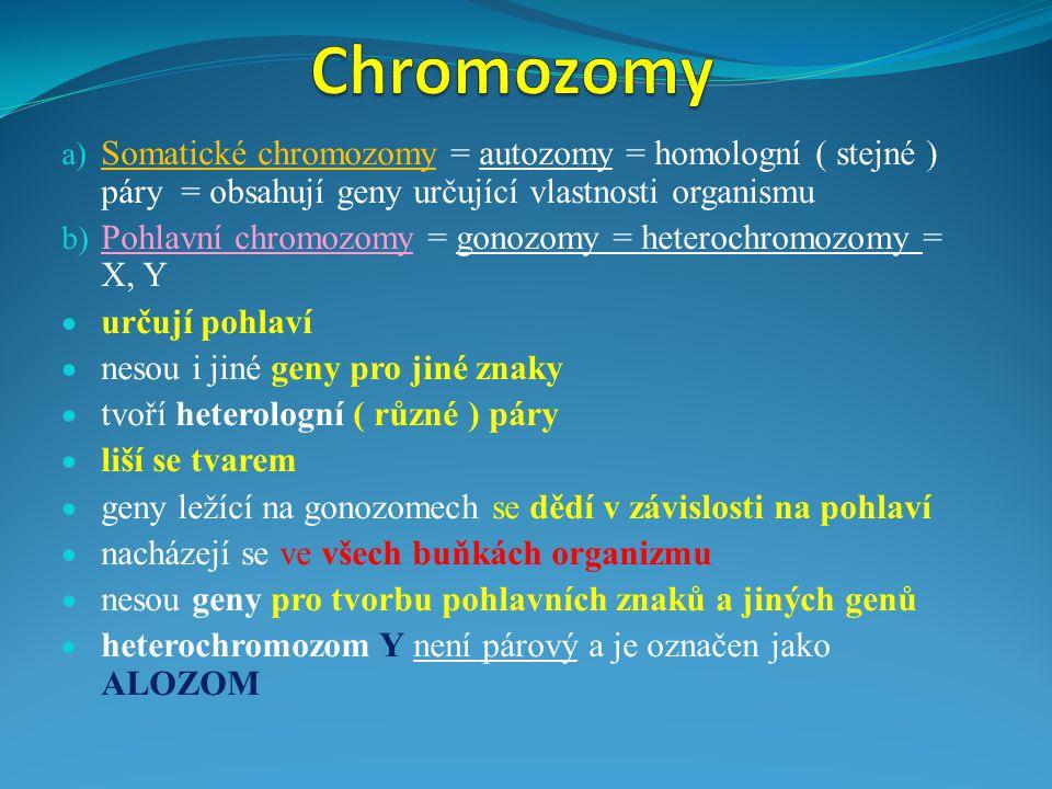 Chromozomy Somatické chromozomy = autozomy = homologní ( stejné ) páry = obsahují geny určující vlastnosti organismu.