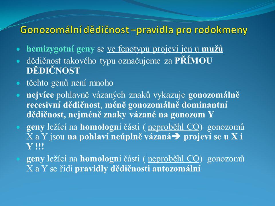 Gonozomální dědičnost –pravidla pro rodokmeny