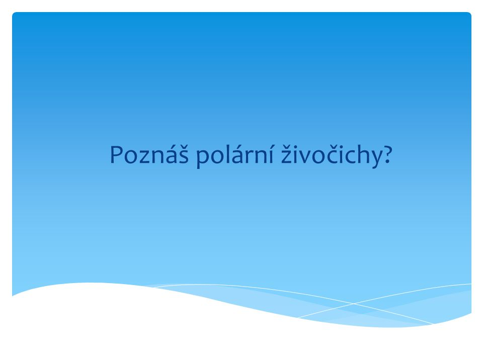 Poznáš polární živočichy
