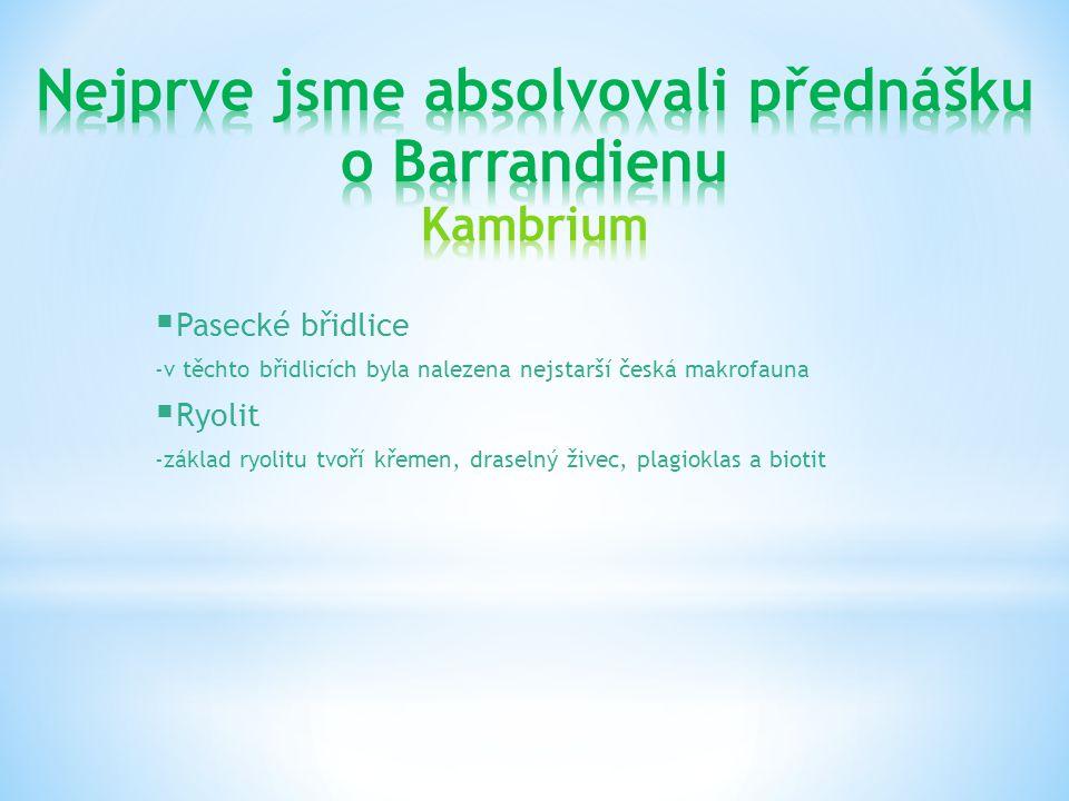 Nejprve jsme absolvovali přednášku o Barrandienu Kambrium