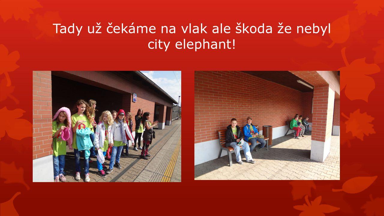 Tady už čekáme na vlak ale škoda že nebyl city elephant!