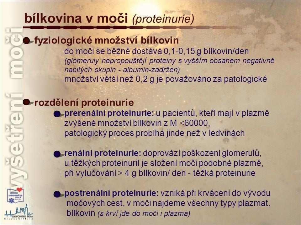 bílkovina v moči (proteinurie)
