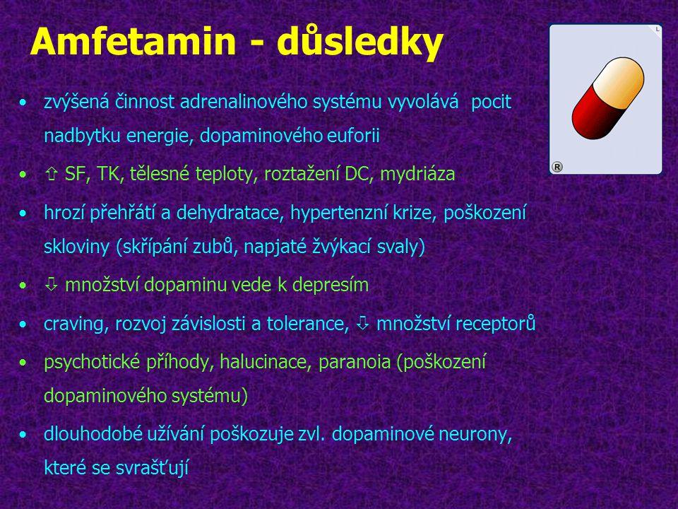 Amfetamin - důsledky zvýšená činnost adrenalinového systému vyvolává pocit nadbytku energie, dopaminového euforii.