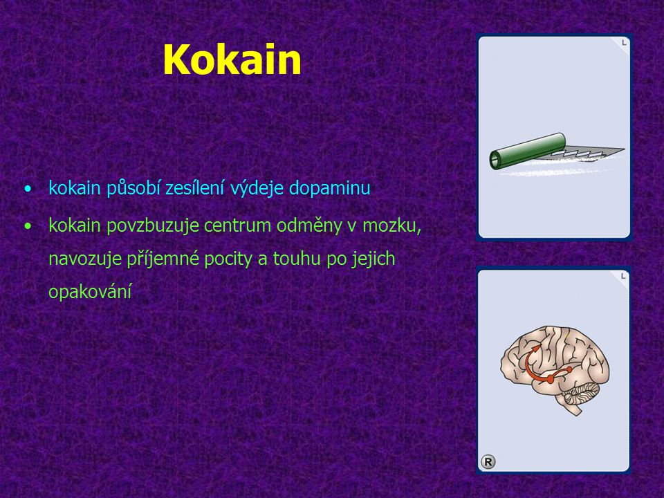 Kokain kokain působí zesílení výdeje dopaminu