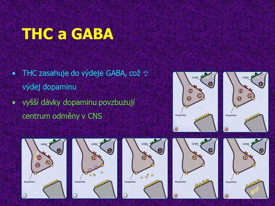 THC a GABA THC zasahuje do výdeje GABA, což  výdej dopaminu