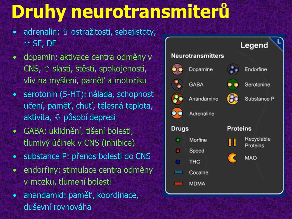 Druhy neurotransmiterů
