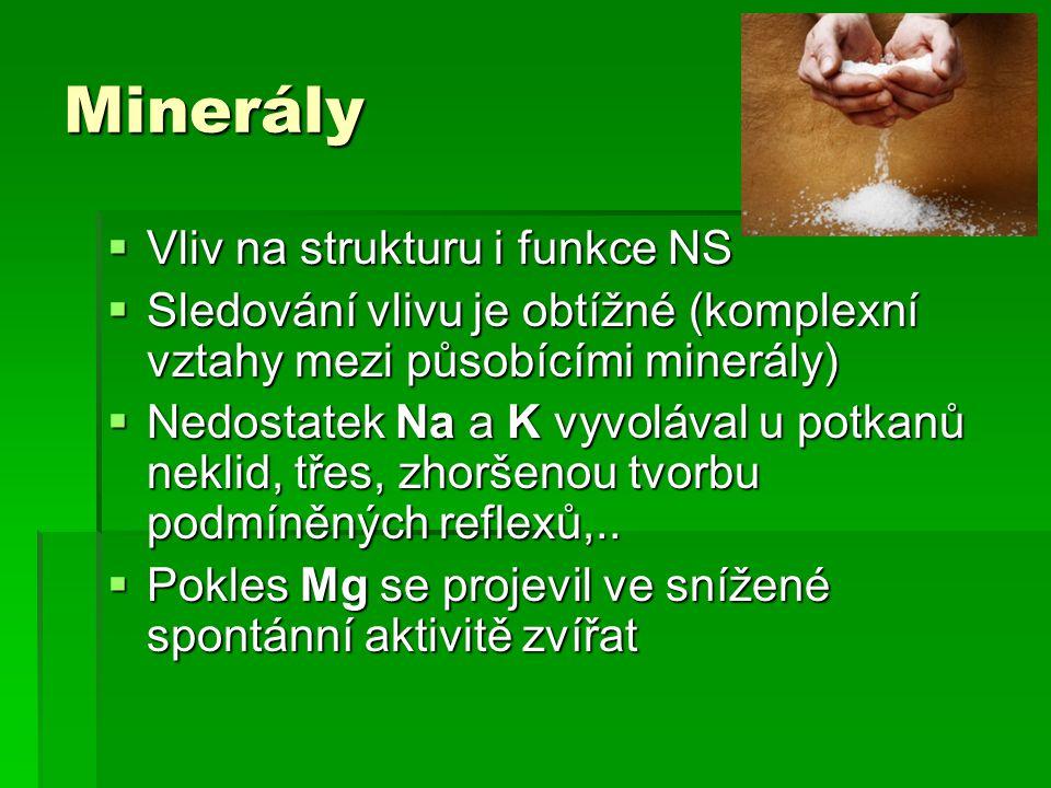 Minerály Vliv na strukturu i funkce NS