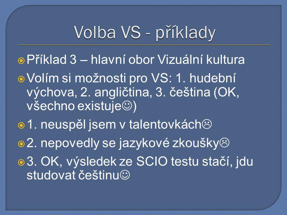 Volba VS - příklady Příklad 3 – hlavní obor Vizuální kultura