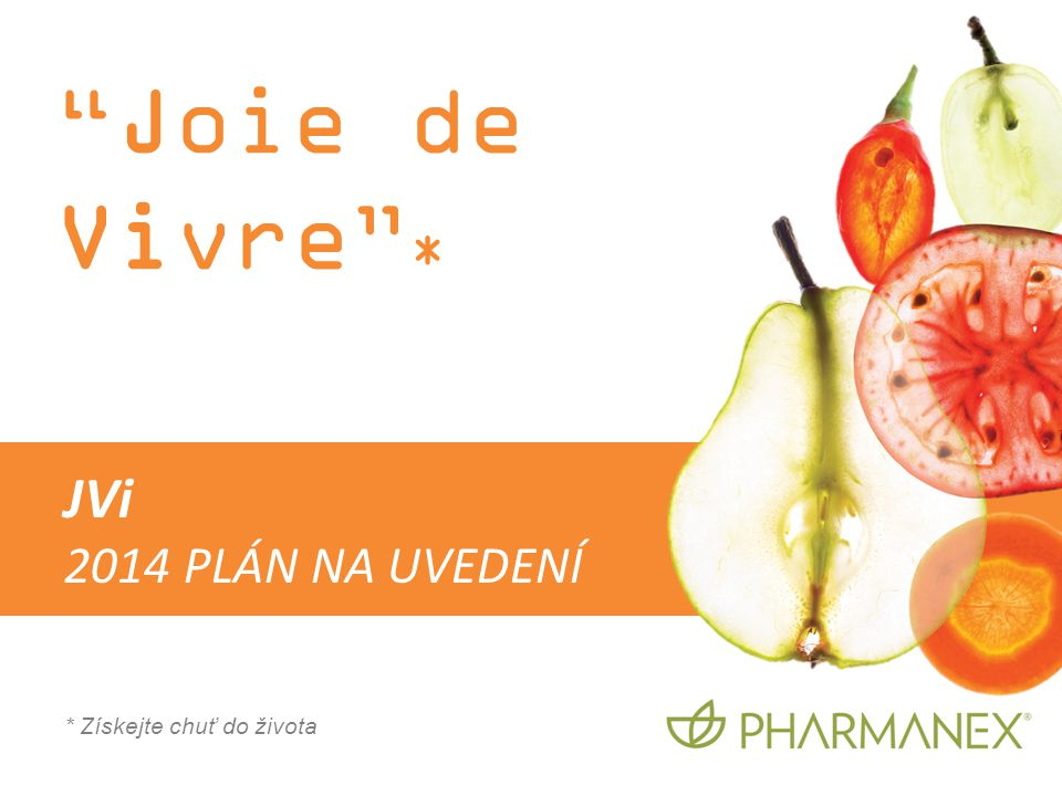 Joie de Vivre * JVi 2014 PLÁN NA UVEDENÍ * Získejte chuť do života