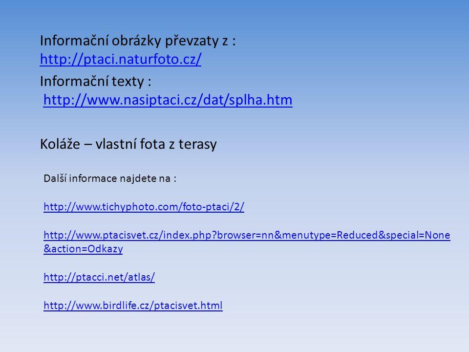 Informační obrázky převzaty z : http://ptaci.naturfoto.cz/