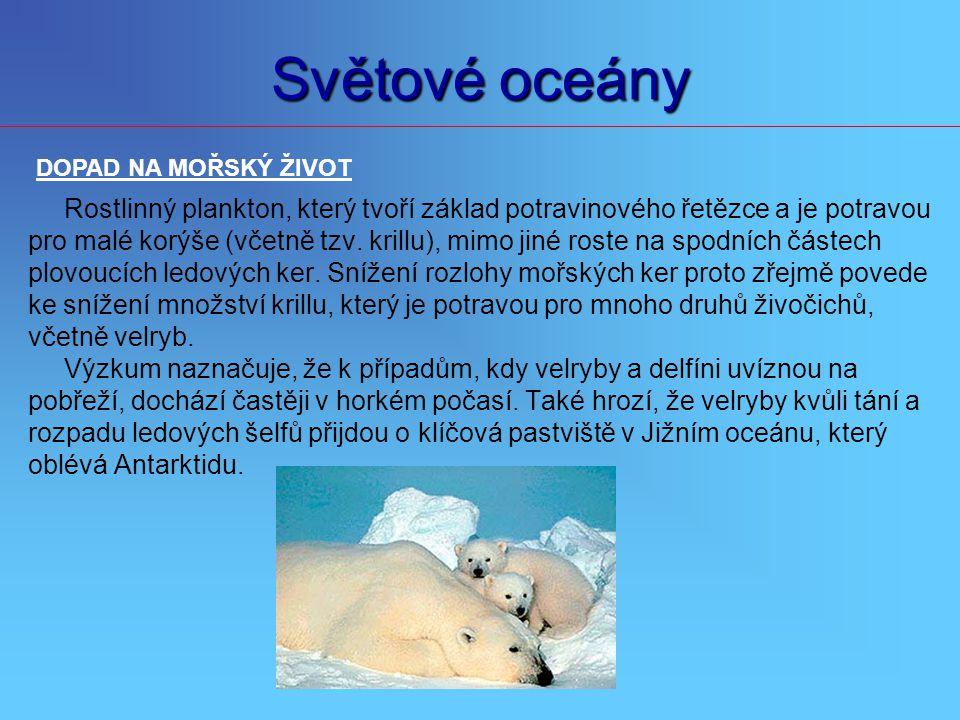 Světové oceány DOPAD NA MOŘSKÝ ŽIVOT. Rostlinný plankton, který tvoří základ potravinového řetězce a je potravou.