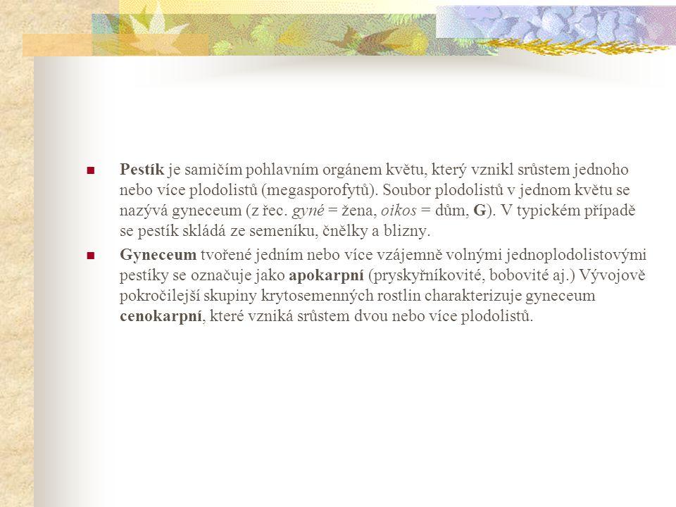 Pestík je samičím pohlavním orgánem květu, který vznikl srůstem jednoho nebo více plodolistů (megasporofytů). Soubor plodolistů v jednom květu se nazývá gyneceum (z řec. gyné = žena, oikos = dům, G). V typickém případě se pestík skládá ze semeníku, čnělky a blizny.