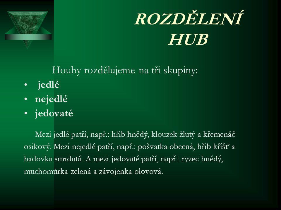 ROZDĚLENÍ HUB jedlé nejedlé jedovaté Houby rozdělujeme na tři skupiny: