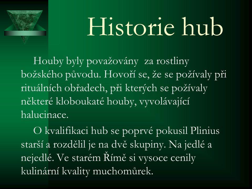 Historie hub
