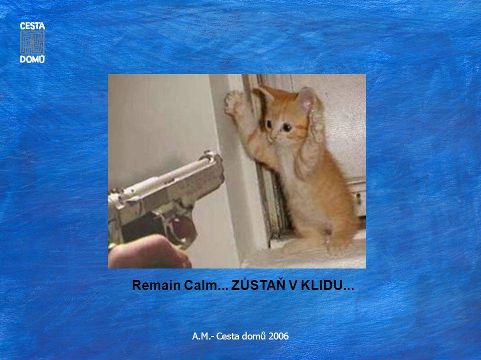 Remain Calm... ZŮSTAŇ V KLIDU...