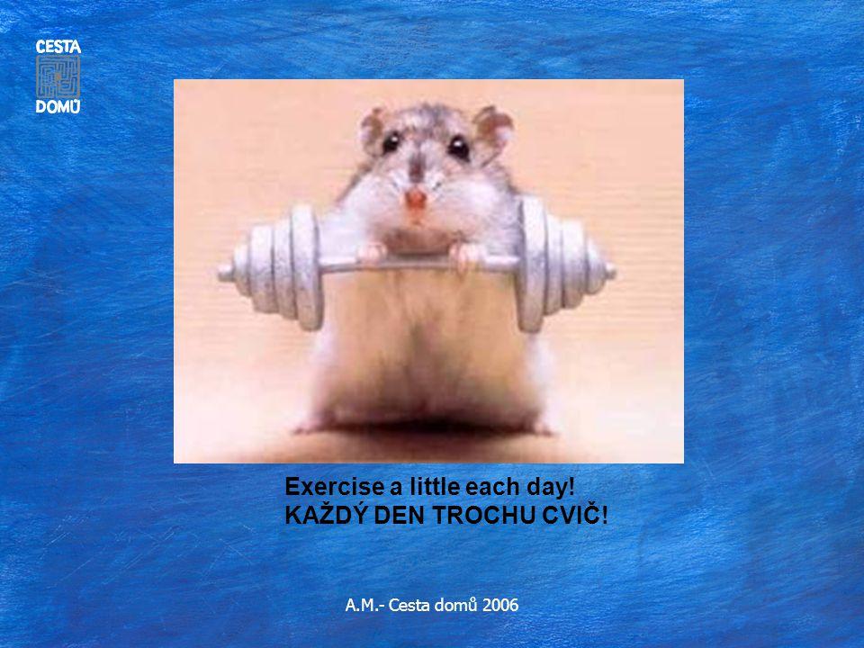 Exercise a little each day! KAŽDÝ DEN TROCHU CVIČ!