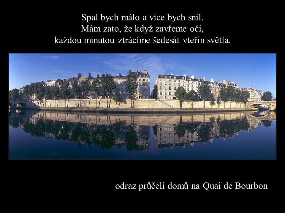 odraz průčelí domů na Quai de Bourbon