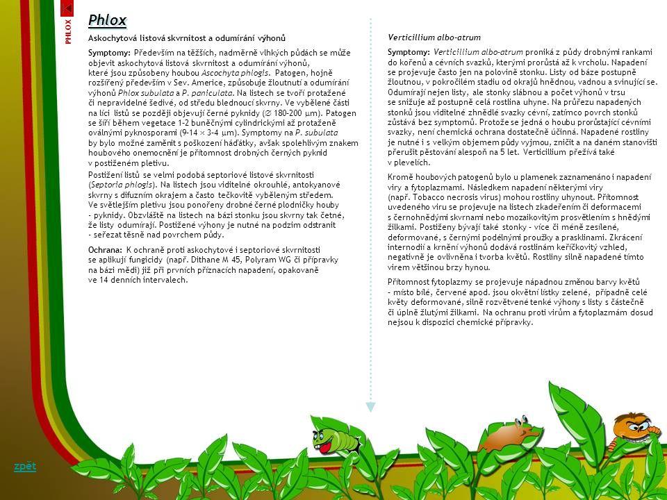 Phlox zpět Askochytová listová skvrnitost a odumírání výhonů