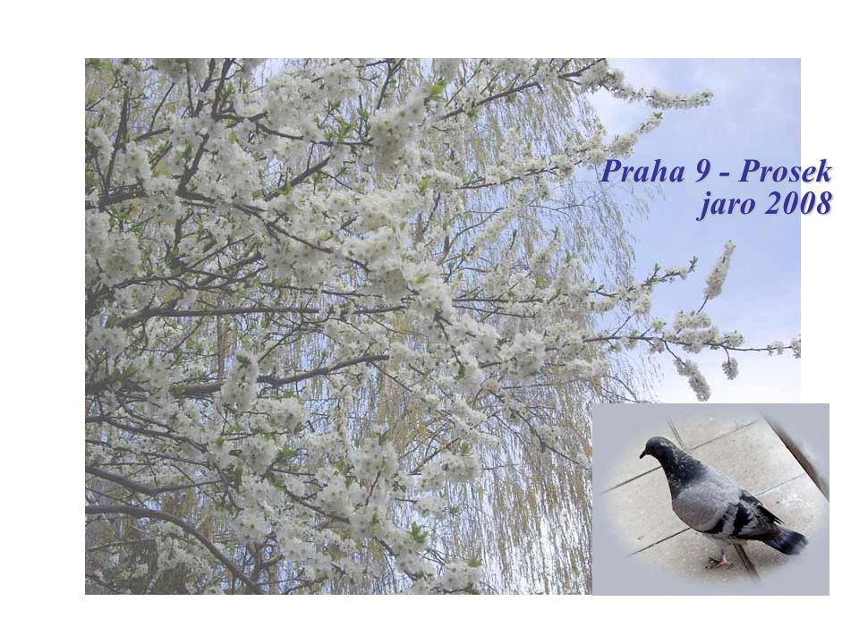 Praha 9 - Prosek jaro 2008