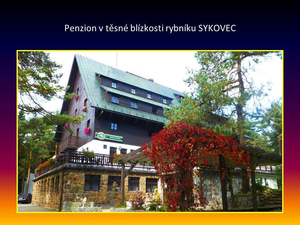 Penzion v těsné blízkosti rybníku SYKOVEC