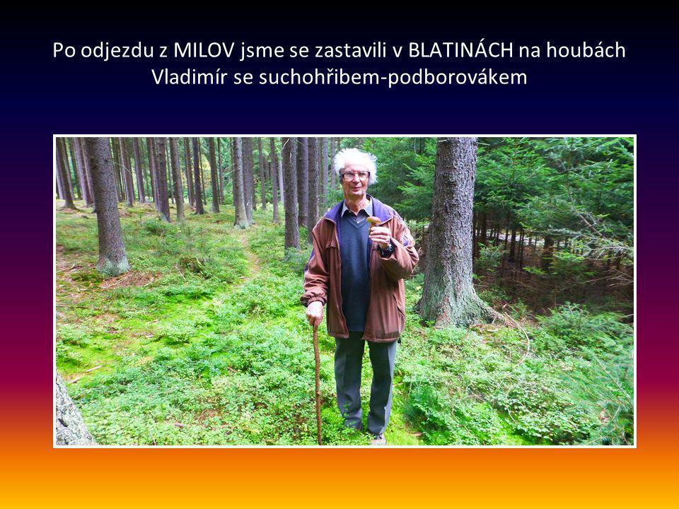 Po odjezdu z MILOV jsme se zastavili v BLATINÁCH na houbách Vladimír se suchohřibem-podborovákem
