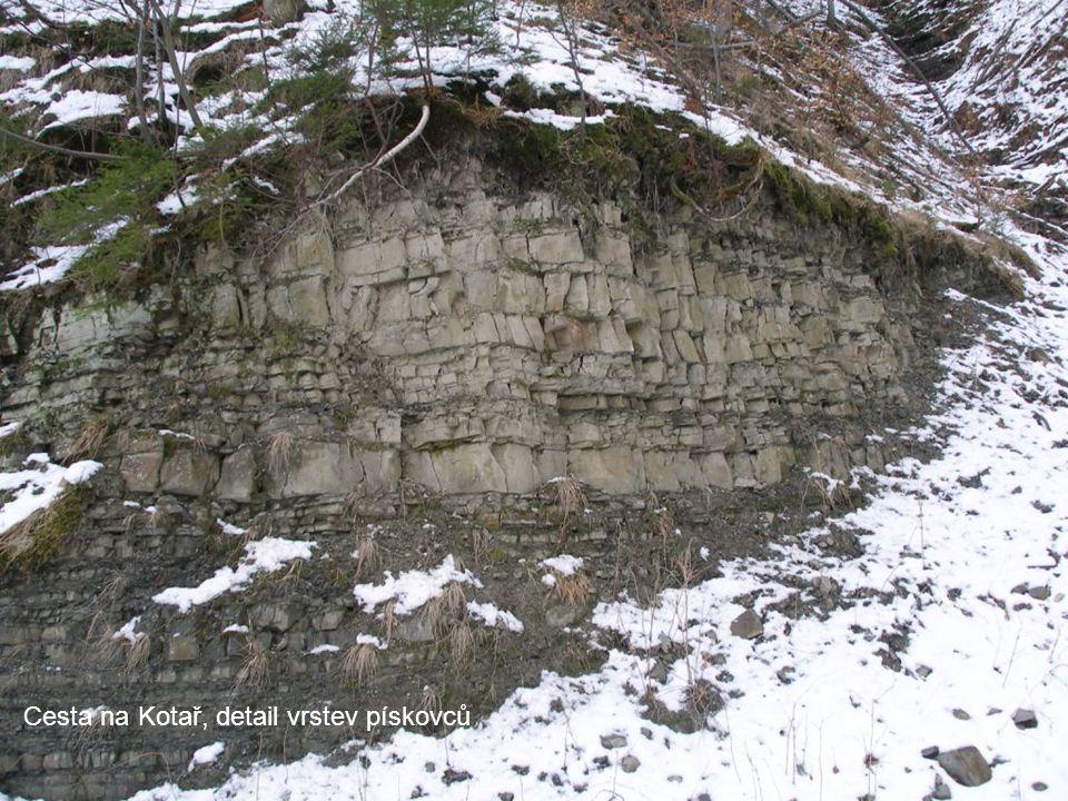 Cesta na Kotař, detail vrstev pískovců