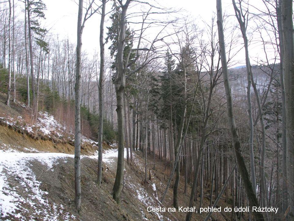 Cesta na Kotař, pohled do údolí Ráztoky