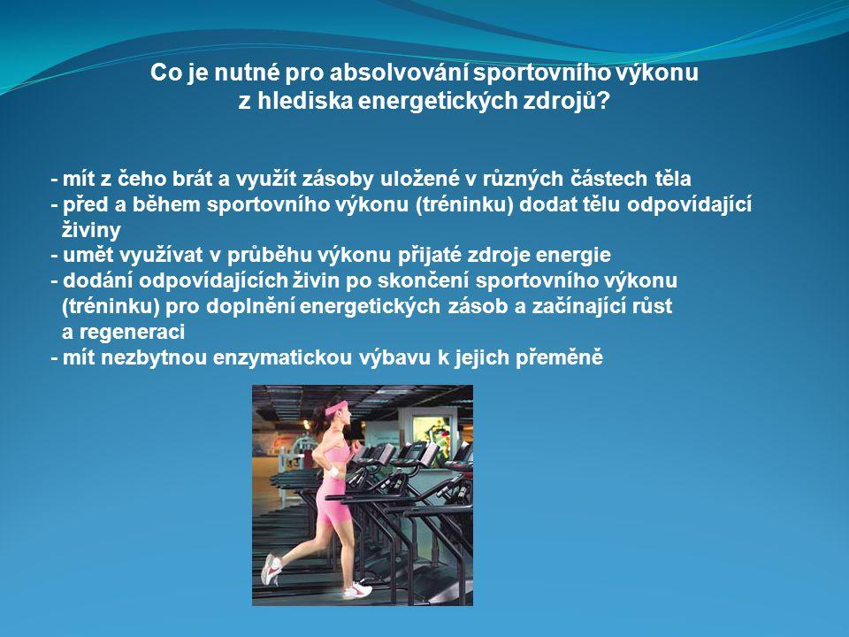 Co je nutné pro absolvování sportovního výkonu