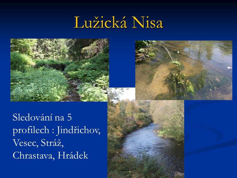 Lužická Nisa Sledování na 5 profilech : Jindřichov, Vesec, Stráž, Chrastava, Hrádek