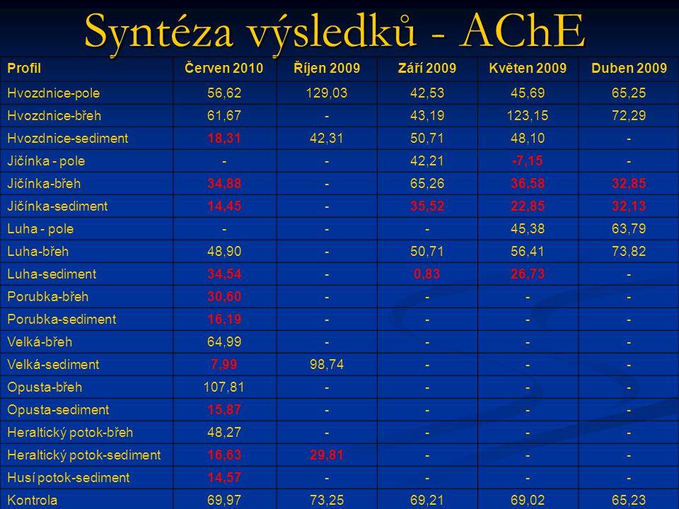 Syntéza výsledků - AChE
