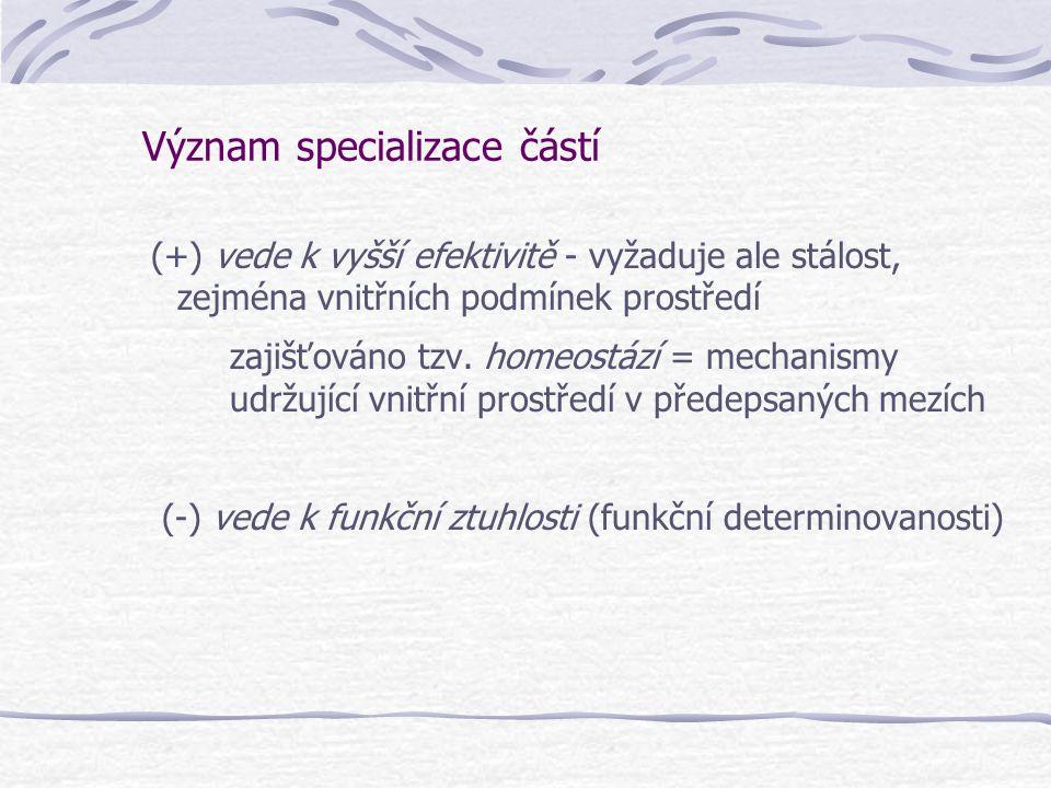 Význam specializace částí