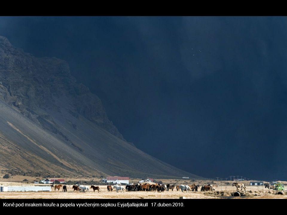 Koně pod mrakem kouře a popela vyvrženým sopkou Eyjafjallajokull 17