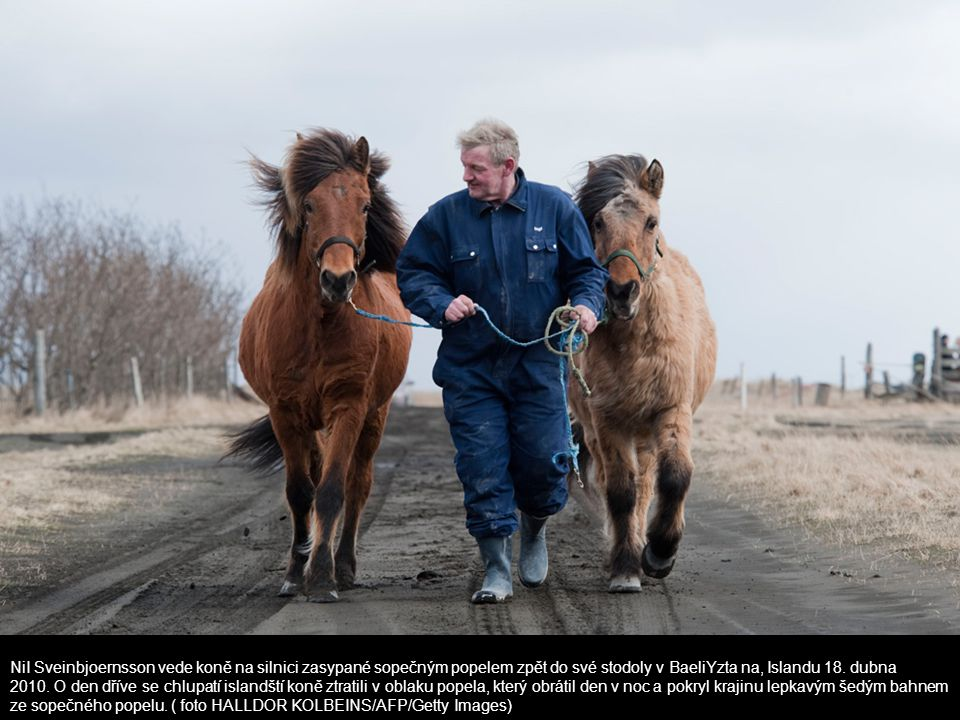 NiI Sveinbjoernsson vede koně na silnici zasypané sopečným popelem zpět do své stodoly v BaeliYzta na, Islandu 18.