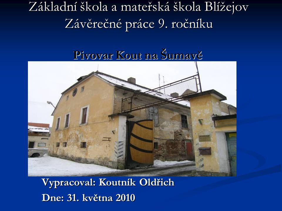 Základní škola a mateřská škola Blížejov Závěrečné práce 9. ročníku